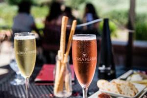 2020内蒙古林西县招聘政府购买服务幼儿园教师20人公告